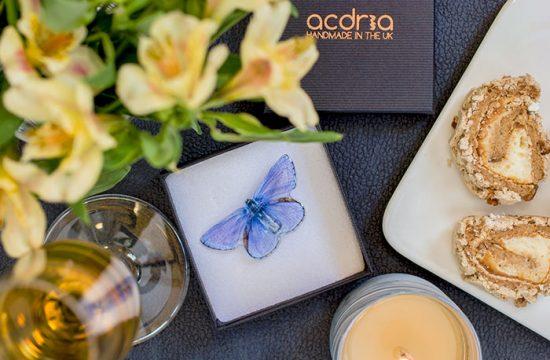 Common Blue Butterfly Jewellery. Brooch