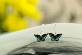 Admiral butterfly earrings