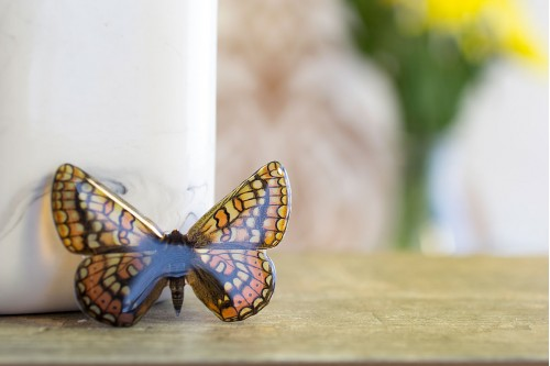 https://www.acdria.co.uk/athalia-butterfly-brooch
