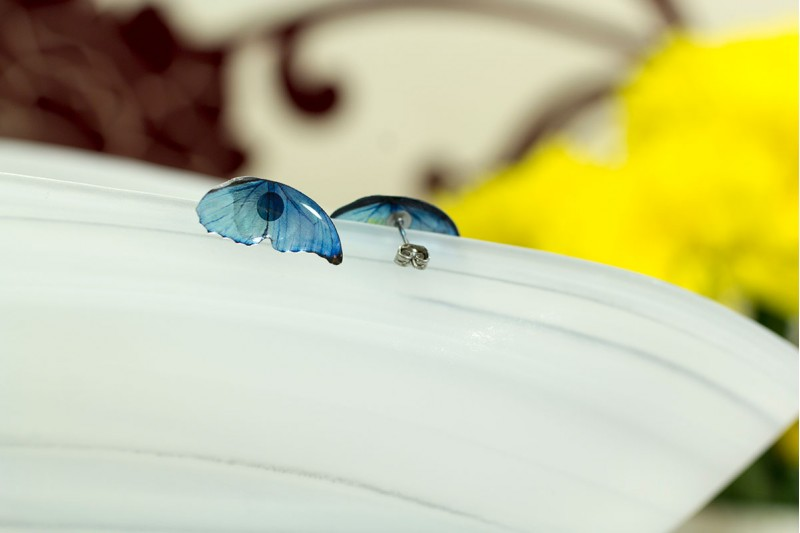 Blue morpho stud earrings