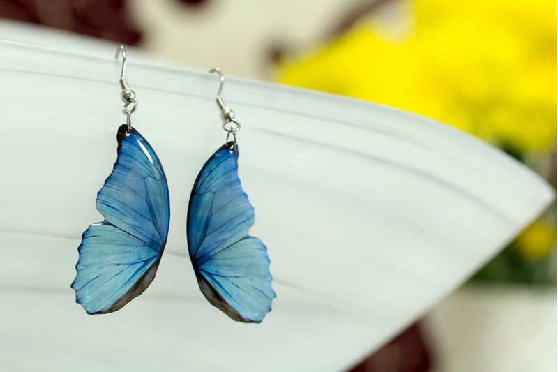 Blue morpho small wing earrings