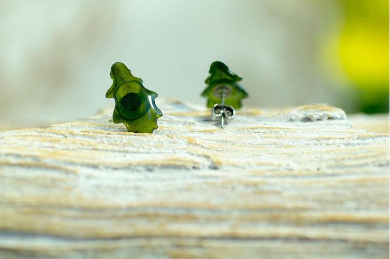 British Oak stud earrings