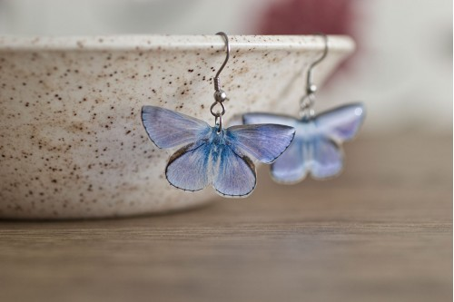 https://www.acdria.co.uk/common-blue-butterfly-earrings