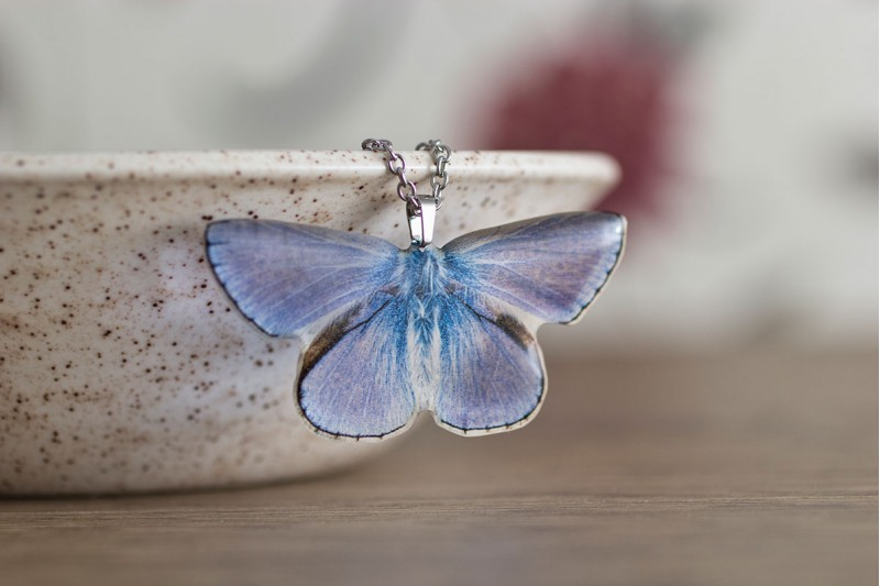 Common Blue butterfly necklace