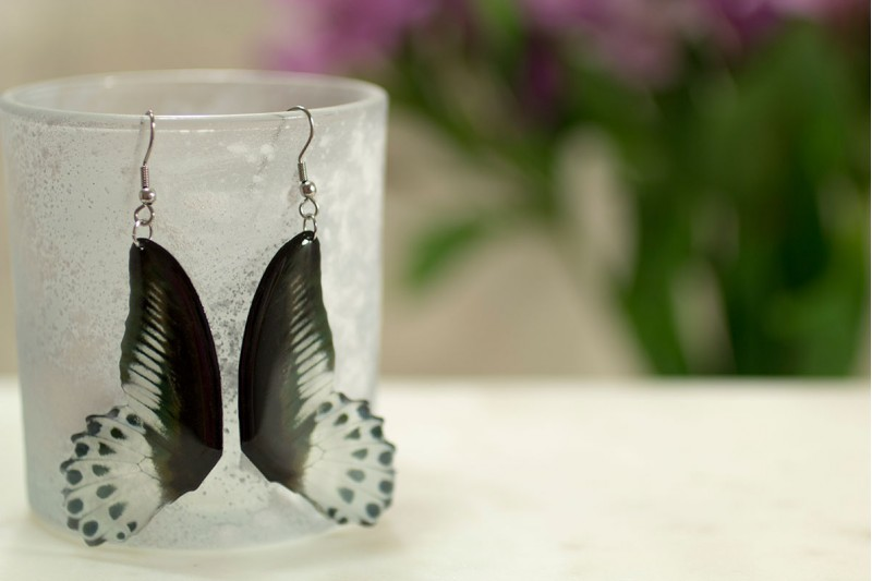 Papillo butterfly wing earrings