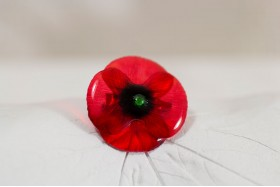 Poppy small brooch