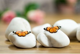 Tiger butterfly small earrings